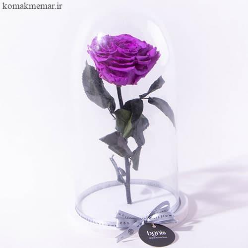 قیمت گل رز جاودان